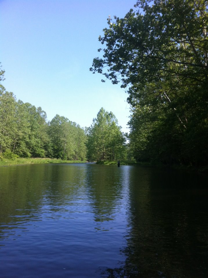 Brookville indiana is a beautiful place to fly fish for Trout fishing indiana