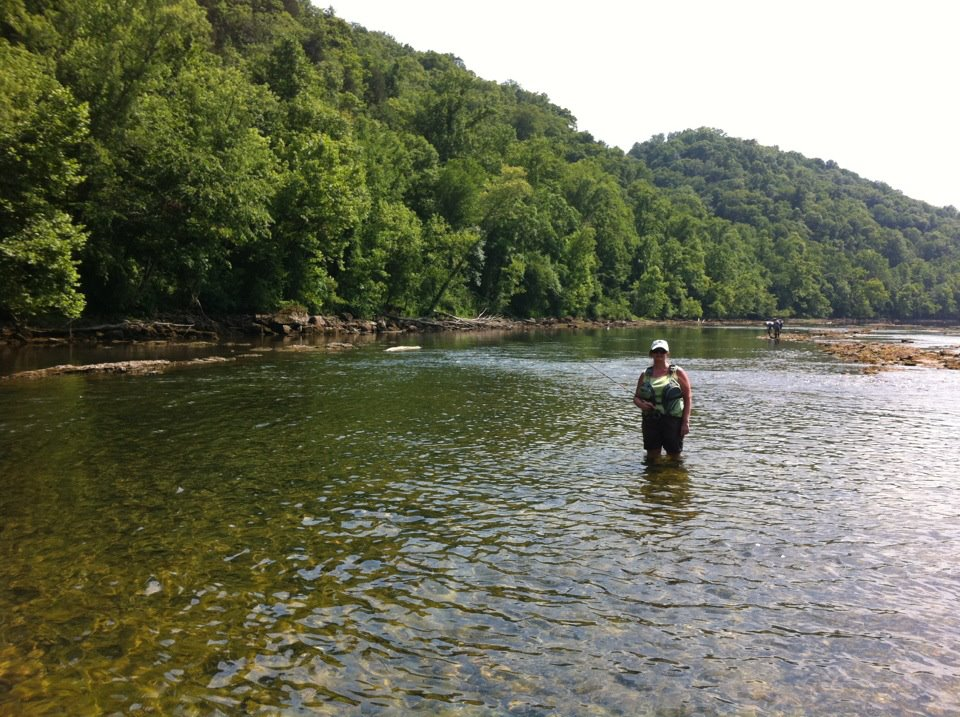 fly fishing on the clinch river clinton tennessee