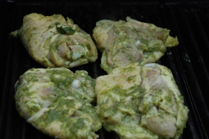 Herb Marinated Chicken